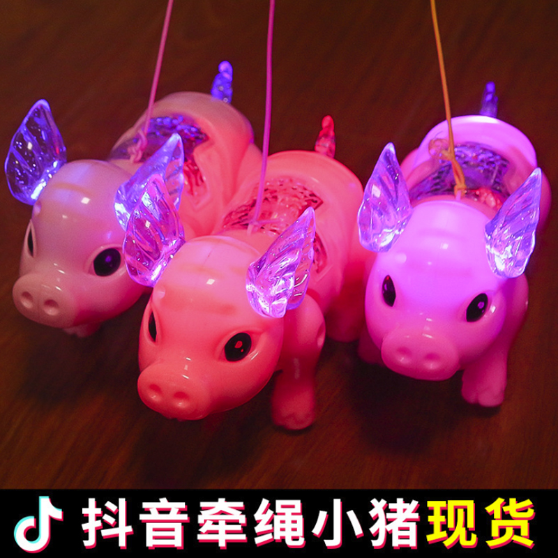 Net red rope will run the electric piglet glow music walking child baby baby toys boys and girls child shake sound 730wll
